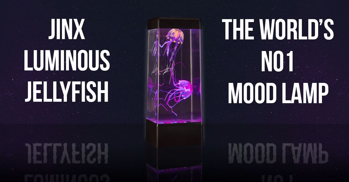 The best jellyfish mood lamp